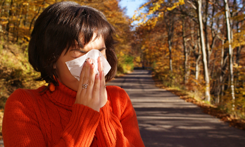 10 Facts You Must Know About Allergies