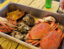 Crabs or Oysters