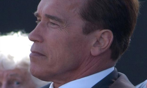 How Should Arnold Schwarzenegger Cope Up With The Stress He Is Going Through Right Now?