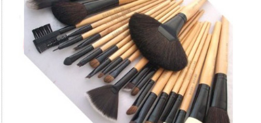 Boston World Professional Makeup Brush Set