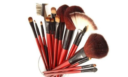 Shany Professional Cosmetic Brush Set