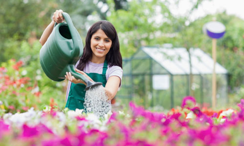 Great Garden Care Tips