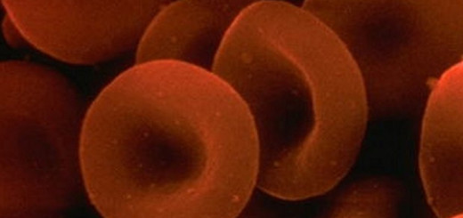 What Are The Symptoms Of Anemia