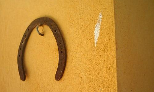 1. Horse Shoe