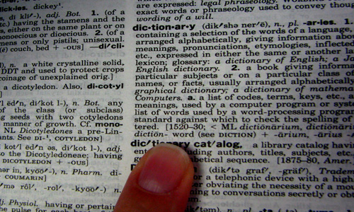 12 New Words Added To The 2011 Dictionary
