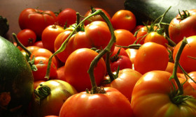 13 Ways How You Can Use Tomatoes For Beauty