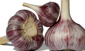 9 Health Benefits of Garlic
