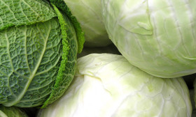 8 Health Benefits of Cabbage