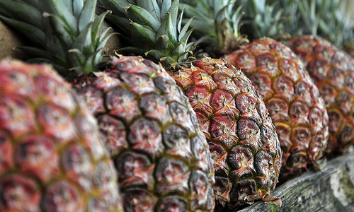 All You Wanted to Know About The Nutrition Facts of Pineapple