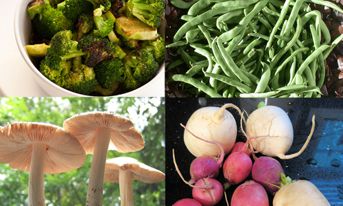 5 Best Vegetables to Lose Weight