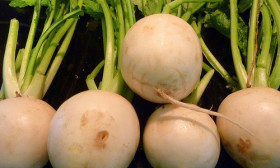 5 Health Benefits of Turnip