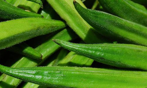 5 Benefits Of Okra