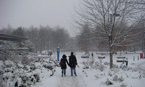 Fun activities to do in the snow with your date