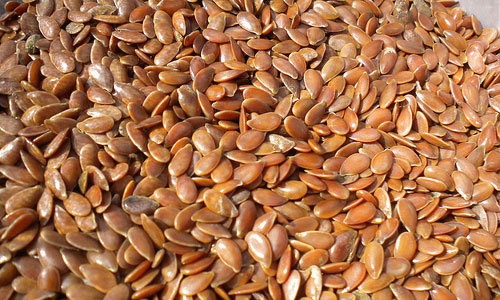 10  Health Benefits of Flax Seed Oil