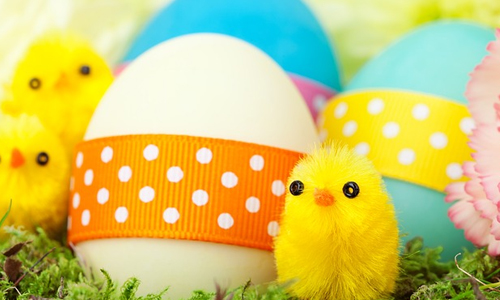 6 Reasons Why Easter Is So Special
