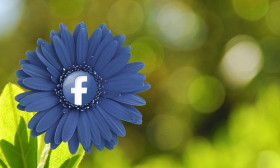 6 Good Reasons to Post Your Relationship Status on Facebook