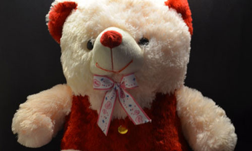 10 Interesting Facts About Your Favorite Teddy Bears