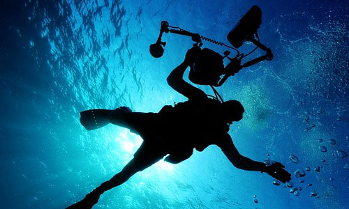 7 Reasons Why You should Try Scuba Diving