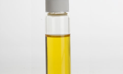 4 Health Benefits of Wheat Germ Oil