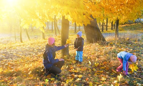 6 Tips for Keeping Your Kids Active in Fall