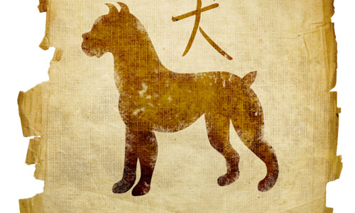 7 Things to Know About the Chinese Zodiac Sign Dog