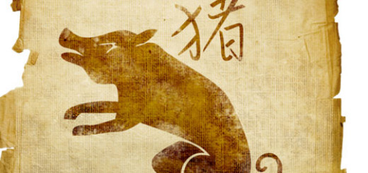 Things-to-know-about-the-Chinese-Zodiac-Sign-Pig