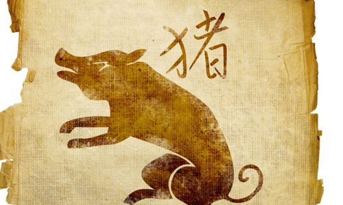 7 Things to Know About the Chinese Zodiac Sign Pig
