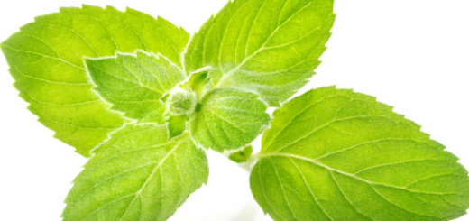 health-benefits-of-mint-leaves