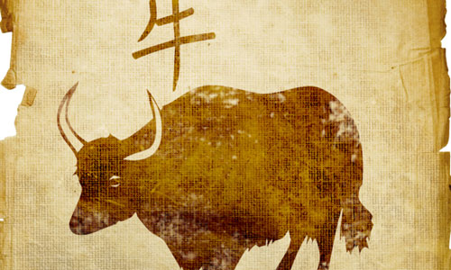 7 Things to Know About the Chinese Zodiac Sign Ox