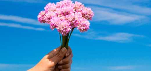 tips-for-gifting-flowers
