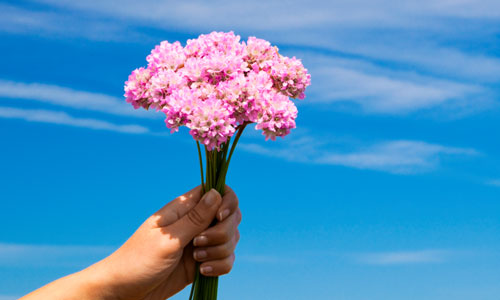 7 Tips for Gifting Flowers