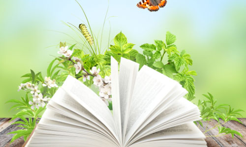 Top 5 Literary Magazines