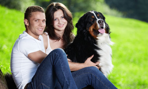 5 Ways to Convince Your Husband to Get a Dog