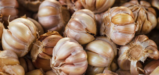 benefits-of-garlic-supplements