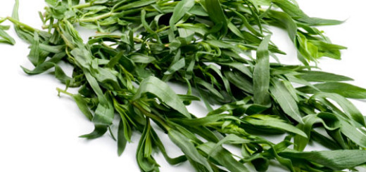 Health-Benefits-of-Tarragon