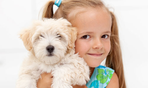 Best Pets for Your Kids