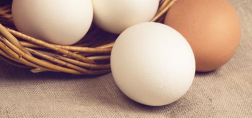 Eggs: