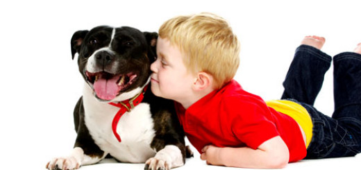things-your-dog-can-teach-your-child