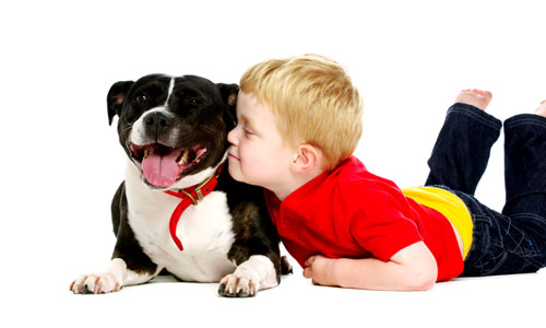 Things Your Dog can Teach Your Child