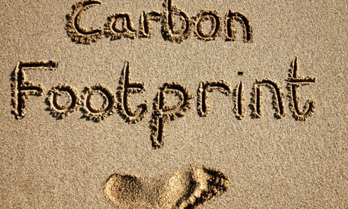 Ways to Decrease Your Carbon Footprint