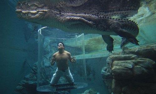 3-Crocosaurus-Cove,-Australia