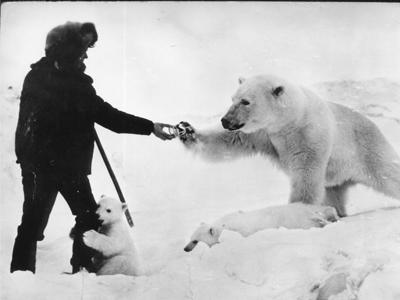 Mr.Man-meets-Mr.Polar-Bear