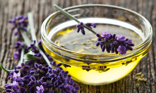Amazing Health Benefits of Lavender Oil