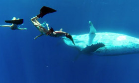 3 Women Dance With 3 Whales Underwater. This Is Like a Dream!